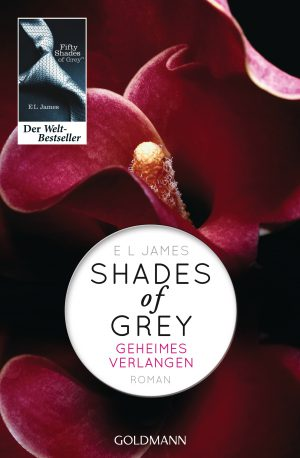 fifty shades buch